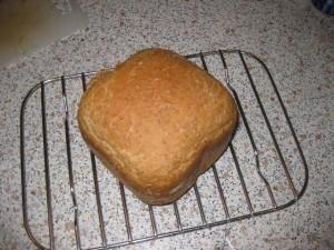 Det første brød